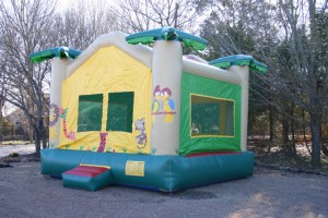 birthday party bounce house rental jungle