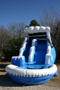rent dolphin water slide with pool